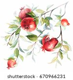 fruits pomegranate on a branch. ... | Shutterstock . vector #670966231