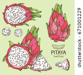 collection of pitaya fruit ... | Shutterstock .eps vector #671001229