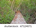 wood bridge in mangrove forest   Shutterstock . vector #67124071