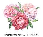 hand painted peonies bouquet...   Shutterstock . vector #671271721