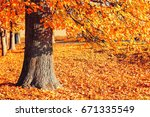 autumn landscape of sunny... | Shutterstock . vector #671335549