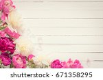 peonies on white background.... | Shutterstock . vector #671358295