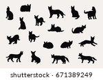 serval cat animal vector doodle ...   Shutterstock .eps vector #671389249
