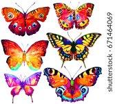 beautiful butterflies  set... | Shutterstock . vector #671464069