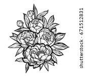 vector illustration. peonies... | Shutterstock .eps vector #671512831