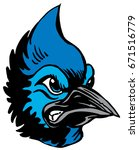 Mascot Blue Jay head, proud and tough, which gives tribute to traditional school mascots but with a new look and attitude. Suitable for all sports. - stock vector