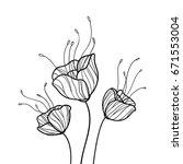 poppy flower graphic image.... | Shutterstock .eps vector #671553004