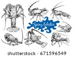 graphic crayfish drawn in line... | Shutterstock .eps vector #671596549