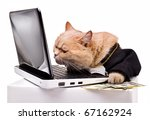 Stock photo intelligent cat for the laptop animal in the academic robes on a white background financial success 67162924
