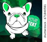 bulldog  dog  animal  french ... | Shutterstock .eps vector #671840581