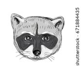 illustration of a raccoon head... | Shutterstock .eps vector #671884435