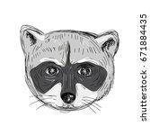 illustration of a raccoon head... | Shutterstock .eps vector #671884435