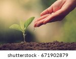 hands of farmer growing and... | Shutterstock . vector #671902879