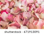 Stock photo pink rose leaves background pattern selective focus 671913091