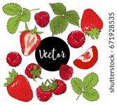 strawberry and raspberry vector ... | Shutterstock .eps vector #671928535