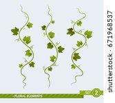 floral elements. grape vines  ... | Shutterstock .eps vector #671968537