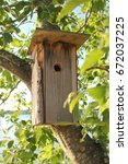 Small photo of A handmade wooden birdhouse on an alder tree.