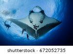 pacific manta ray | Shutterstock . vector #672052735
