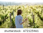 young woman with wine glass... | Shutterstock . vector #672125461