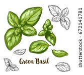 full color realistic sketch... | Shutterstock .eps vector #672141781