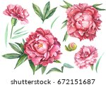 red carnations and peonies set... | Shutterstock . vector #672151687