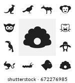 set of 12 editable zoology...