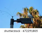 Seagull Perched On Lamp Post...
