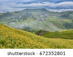 beautiful lily field with...   Shutterstock . vector #672352801