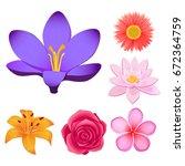 lovely violet crocus  peach... | Shutterstock .eps vector #672364759
