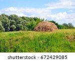 haycock standing on the green... | Shutterstock . vector #672429085