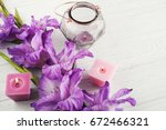 purple gladiolus and lit... | Shutterstock . vector #672466321