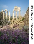 flowers and ruins  | Shutterstock . vector #672515431
