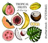 vector hand drawn exotic fruits.... | Shutterstock .eps vector #672534661