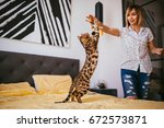 Stock photo woman plays with a rope with bengal cat 672573871