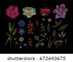 large floral collection. set...   Shutterstock .eps vector #672643675