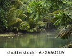 tropical river in green jungle... | Shutterstock . vector #672660109