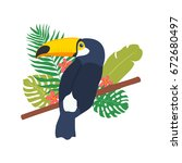 illustration of toucan with... | Shutterstock .eps vector #672680497