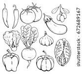 doodle or hand drawn vegetables ...   Shutterstock .eps vector #672689167