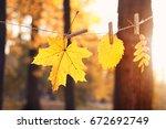 Autumn Landscape. Garland Of...