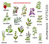 best herbal remedies for... | Shutterstock .eps vector #672751231