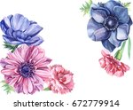 greeting card with anemones and ... | Shutterstock . vector #672779914