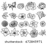 flower set | Shutterstock .eps vector #672845971