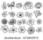 flower set | Shutterstock .eps vector #672845971