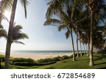 palm trees in the beach in... | Shutterstock . vector #672854689