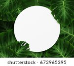 tropical palm leaves.... | Shutterstock . vector #672965395