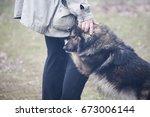 the dog leaned against the man  ... | Shutterstock . vector #673006144