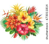 arrangement from tropical... | Shutterstock .eps vector #673011814