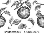 seamless pattern. realistic... | Shutterstock .eps vector #673013071