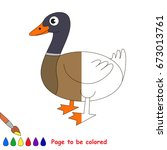 wild duck  the coloring book to ... | Shutterstock .eps vector #673013761