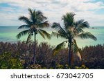two palm trees and the view of... | Shutterstock . vector #673042705